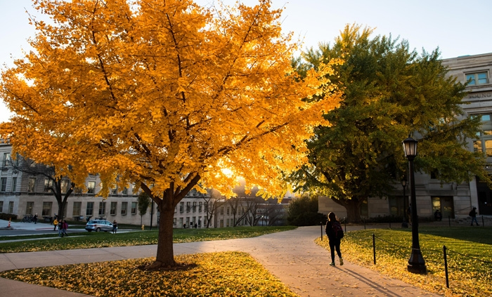 Fall at The University of Iowa